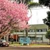 No Paraná, a UEM tem o melhor curso de Odontologia, segundo o ranking da Folha de São Paulo.